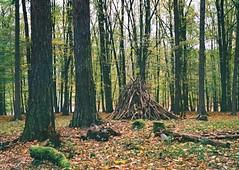 Kiev 4 + Jupiter-8 - Visit of Game Preserve in Kohoutovice (Kojotisko) Tags: nature forest woods brno cc creativecommons vintagecamera czechrepublic kiev kiev4 jupiter8 superiaxtra400