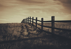 desolation/division (3sidesphotography) Tags: field fence vanishingpoint goldenart