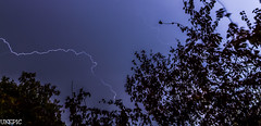 Blue Lightning (Ukelens) Tags: trees light shadow storm tree lights schweiz switzerland shadows swiss bern lightning blitz schatten lightroom sturm blitze berncity ukelens