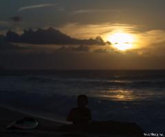 _MG_1117_portfolio (ppiercejr) Tags: sunset silhouette hawaii surf child oahu surfer northshore surfboard portfolio pipeline banzai banzaipipeline