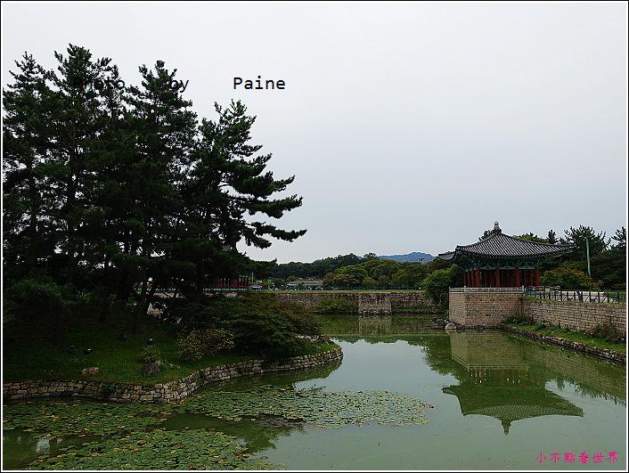 14雁鴨池 (10).JPG