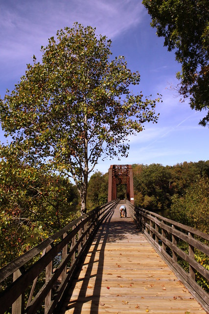 Cheatham County Bicentennial Trail Bridge (Ver. 5)