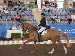 141025_2014_AUS_D_Champs_IntFS_5053.jpg (FranzVenhaus) Tags: horses performance sydney australia competition event nsw athletes aus equestrian riders dressage siec