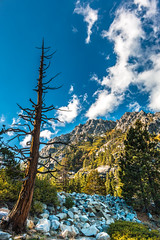 Lake Tahoe (R Rios) Tags: california blue sunset lake mountains green water beautiful rock clouds landscape rocks nevada tahoe sierra bonsai northern