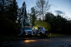 Storm damage & restoration (Puget Sound Energy) Tags: usa unitedstates wash redmond restoration poweroutage stormdamage pse kingcounty outage lineman buckettruck windstorm outages downedlines pugetsoundenergy poweroutages northkingcounty restorationefforts