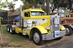 1958 Needlenose (RyanP77) Tags: show wheel truck cattle dump semi chrome rig pete heavy stockton tanker peterbilt 389 359 hauler cabover 388 379 352 daycab