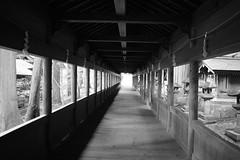 Suwa Taisha Shrine (takashi_matsumura) Tags: nikon shrine nagano taisha suwa d5300