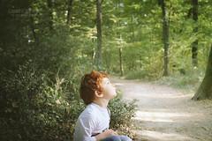Tache de rousseur (Cedpics) Tags: wood light boy red portrait sun fall nature automne kid 31 enfant forêt roux garçon fujixpro1 fujinonxf35mm