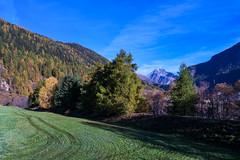 Forested Mountains near Zernez (Bephep2010) Tags: mountain alps berg schweiz switzerland sony alpen engadin nex graubnden grisons bewaldet forested zernez piznuna nex6 selp1650 zernetz