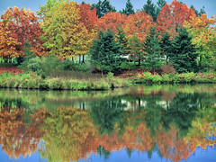 Summer Lake in Fall
