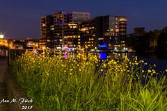 20150606_WP_Downtown_Photowalk-1002 (Ann Flick) Tags: night downtown milwaukee wisconsinphotographers