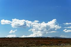 20170302-19-Building clouds (Roger T Wong) Tags: australia centralplateauconservationarea greatpinetier sel70300g sony70300 sonya7ii sonyalpha7ii sonyfe70300mmf2556goss sonyilce7m2 tasmania wha worldheritagearea bushwalk camp centralhighlands clouds hike trektramp walk
