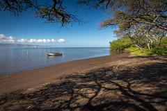 Molokai Shoreline (helenehoffman) Tags: shoreline beach ocean molokai pacific lanai hawaii mangroves smallboat sky tropical