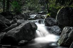 Purity (Luis Sousa Lobo) Tags: img7574 water waterfall água montanha rocks pedras longexposure longa exposição nature switzerland suiça suisse schweiz
