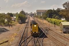 NR27(IP) long end leads two NRs and BS6 through Waratah 26-11-16 (kurtisslomka) Tags: arvo freight waratah nsw australia trains nrclass longendleading
