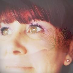Indéfinie (nathaliedunaigre) Tags: autoportrait selfportrait artmanipulation montage processing femme woman carré square colors couleurs colored coloré redhair redhead ginger purple violet eyes yeux greeneyes yeuxverts regard lens collage composition