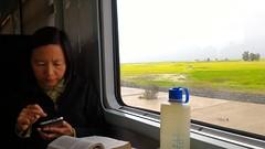 On the train from Tangier to Rabat, Morocco (John Meckley) Tags: rabat morocco train window nalgene bottle