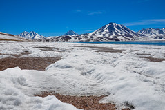 Altiplano (Oliver J Davis Photography (ollygringo)) Tags: laguna cerro miscanti chilean andes lagoon lake mountains altiplano chile south america travel landscape ice snow winter wintry cold icy nikon d90 miñiques volcano antofagasta desert atacama sanpedro