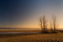 polarized beach (Christian Collins) Tags: canoneos5dmarkiv canon beach baycitystatepark park parque baycity lakehuron huron sunrise amanecer tree polarizing filter polar ice cold winter michigan midmichigan