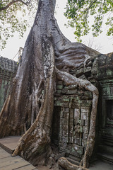 Cambodge Angkor temple Bayon ( Philippe L PhotoGraphy ) Tags: krongsiemreap siemreapprovince cambodge kh
