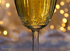 MM Birthday ... (MargoLuc) Tags: macromondays theme happy10years macro birthday champagne golden bokeh monday glass cheers