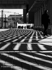 Lines (David Cucalón) Tags: david cucalon shadows sombras streetphotography fotografiacallejera barcelona highcontrast altocontraste blancoynegro blackandwhite