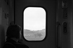 Watching the World go by (Dai Lygad) Tags: trains railways railroads passenger person woman window view rural class175 arrivatrainswales welshmarches blackandwhite bw noiretblanc flickr uk jeremysegrott travelling journeys pictures stock photos images photographs photography canon camera 550d eos watchingtheworldgoby amateurphotography dailygad transport british forwebsite forwebpage forblog forpowerpoint forpresentation