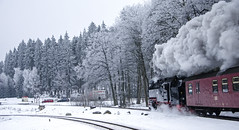 Into the frozen lands (Nigel Valentine) Tags: harz steam asnow narrow gauge germany