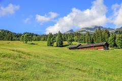 First_19Aug16_105716_42_6D-2 (AusKen) Tags: switzerland grindelwald bern ch