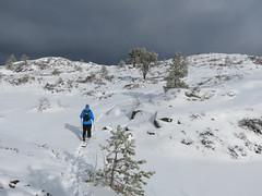 The wanderer (Mrs.Snowman) Tags: emblemsfjellet ålesund aalesund sunnmøre norway winter hiking hills