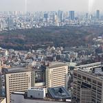Meiji Shrine thumbnail