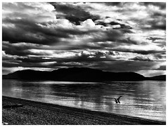 Sandy Point Scenes II (jcurtis4082) Tags: squalicum lake road sandypoint denmark orcas blackandwhite iphone camera clouds noir jere miles john kimberly