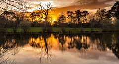 9Y0A3296 (kevaruka) Tags: netleyhall shrewsbury shropshire england sunset canoneos5dmk3 canon canonef1635f28mk2 uwa ultrawideangle landscape colour colours color colors water lake countryside statelyhome historic history orange green blue 5d3 5diii 5d 5dmk3 flickr frontpage thephotographyblog ilobsterit spring 2017 april kevinfrost dusk twilight unitedkingdom uk trees woodlands clouds cloudy cloud