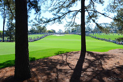 The Masters - April 4, 2017_0271a1s (crgimages) Tags: crg crgimages augusta national masters ga georgia golf pga green jacket
