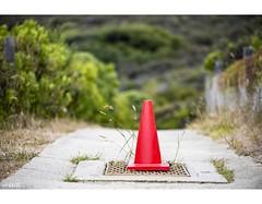 Caution (red stilletto) Tags: bellsbeach thegreatoceanroad thegreatoceanroadvictoria greatoceanroad greatoceanroadvictoria witcheshat cone safety caution