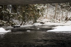 The step of the river (irio.jyske) Tags: step river nature landscape water snow white flood forest sigma canon