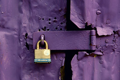 Tension (thewallflowers.) Tags: photographer creativephotography teenagephotography teenagephotographer canonphotography canoncamera canon camera emotion creative abstract tension colorful color leaves plants rust purple door lock