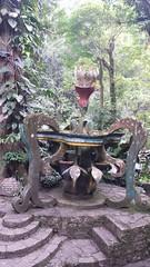 20150808_141847 (mariolopezt) Tags: xilitla cascadas huastecapotosina