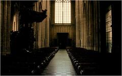 st. pieter  leuven, belgium (glasseyes view) Tags: leuven canon cathedral gothic kerk glasseyesview