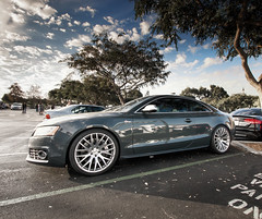 Audi S5 (Winning Agent) Tags: auto california morning sky cars coffee car clouds sunrise automobile unitedstates sandiego euro wheels saturday fast bluesky audi carlsbad dramaticsky meet stance carporn carmeet fitment audis5 audizine