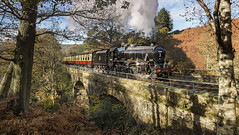 44806 - @ Water Ark...Autumn 2014 (Katybun of Beverley) Tags: bridge autumn trees sunlight train landscape shadows steamer yorkshiremoors goathland nymr 44806 waterark