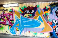 Hall of Fame Frankfurt Nov 2014 (ratswegkreisel) Tags: streetart me germany graffiti mural frankfurt joe exotic hype halloffame af 8mm bishop napo nos topic masterpiece spraycanart brutal tms 2014 podz atem hallofshame dbl sge samyang streetartfrankfurt xang tesk virs frankfurtstreetart dfoe alphajoe mainstyle mainstylefrankfurt ratswegkreisel rtswgkrsl frankfurtrtswgkrsl