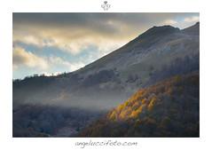 Spot Autunnale (Simone Angelucci) Tags: spot giallo autunno luce viglio simbruini filettino cantari