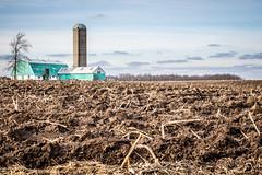Cold (trouble4dan) Tags: autumn green fall field barn farm country silo soil dirt 2013 danhamill