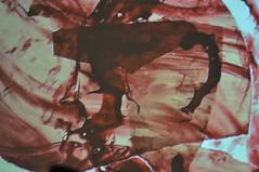 Nevche & Thomas Azuelos by Pirlouiiiit 09102014 (Pirlouiiiit - Concertandco.com) Tags: marseille concert live gig bd 2014 mazenod pirlouiiiit concertdessiné nevche 09102014 nevchethomasazuelos théâtremazenod festivalleslittorales leslittorales