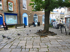 PIGEON'S DINING AREA. (ronsaunders47) Tags: newport isleofwight