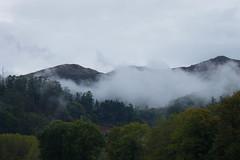 Bruma en monte (Garimba Rekords) Tags: asturias nubes monte bruma