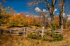 Happy Fence Friday (Thomas DeHoff) Tags: west fall colors fence virginia sony a700