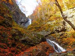 Autumn Falls (photo fiddler) Tags: autumn waterfall novascotia hike falls uisageban