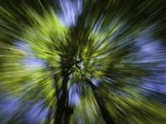 Zoom (Kepa_photo) Tags: olympus e3 kepaphoto